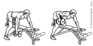 (photo by weight-training-exercises)